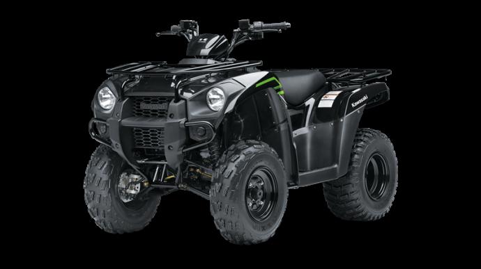 2020 Kawasaki BRUTE FORCE 300